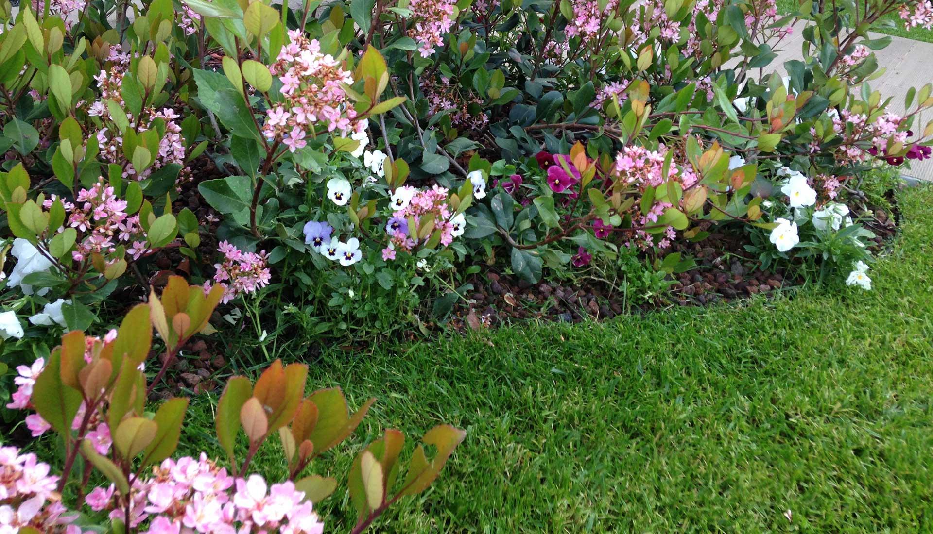 forbici-progettare-giardini-fiori