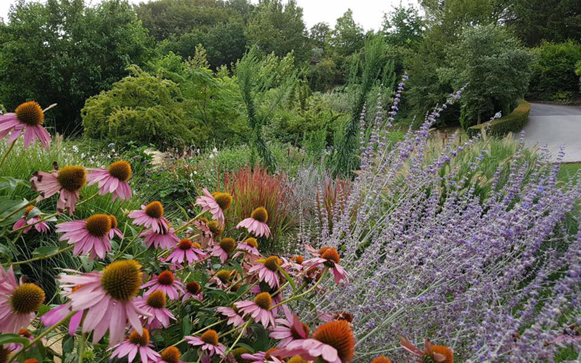 https://www.leforbici.eu/wp-content/uploads/2019/12/forbici-verde-giardino-naturale-lago-garda.jpg